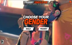 TrannySimulator